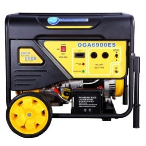 TEC Generator (5.5kW / 6.25kVA) Oga Max 6900 Electric Start